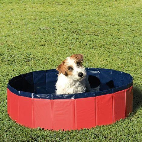 Piscina para perros Ibáñez, fabricada ade PVC, fuerte y resistente, suelo interior antideslizante, disponible en tres tamaños