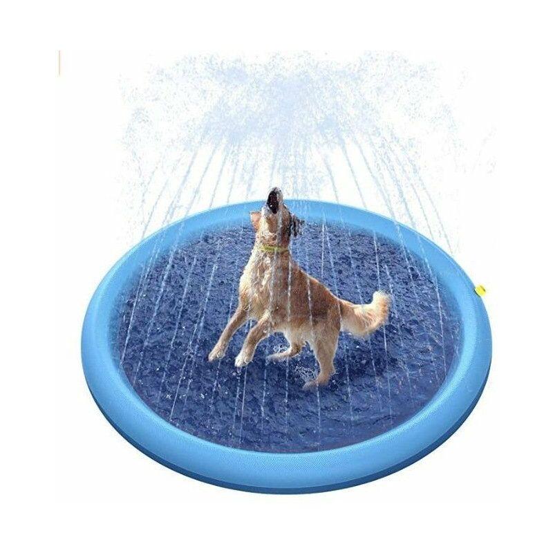 Piscine pour chiens, 150 cm
