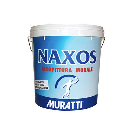 Pittura per pareti e soffitti interni