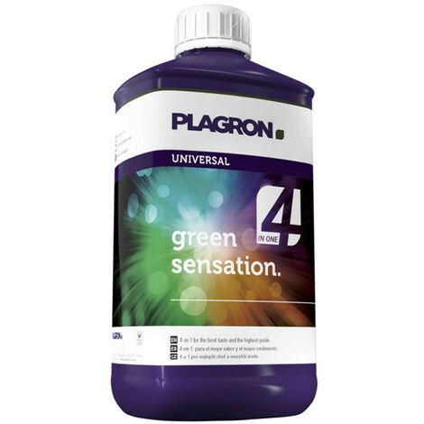 Plagron Green sensation 250ml, activateur de floraison et principes actifs et terpènes