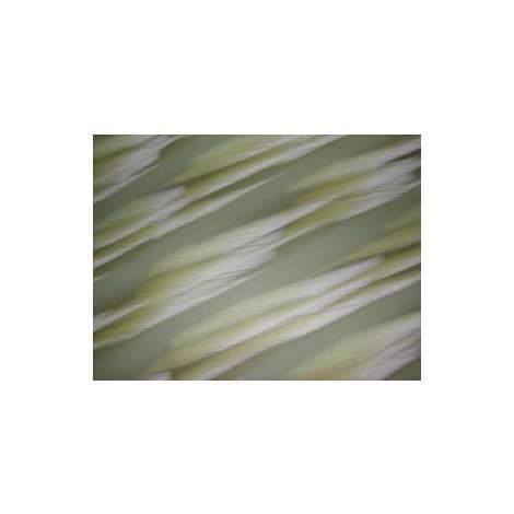 Plancha de acetato de celulosa Marfil 70 x 60 cm, 6mm espesor R.Agulló