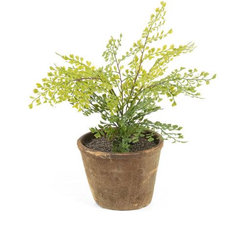 Planta adiantum artificial Zelena