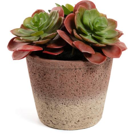 Planta artificial sinocrassula indica