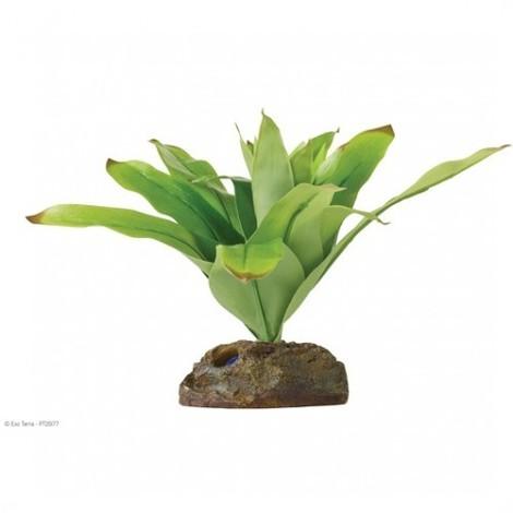 Planta Bromelia Smart Plant EXOTERRA