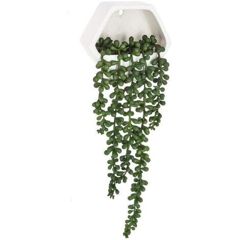 Planta colgante de pared contemporánea- Altura total con planta caída: 45 cm