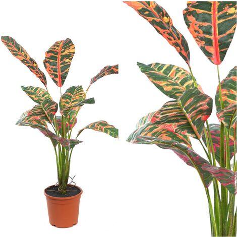 Planta de Croton Artificial en Maceta. Altura 51 Cm