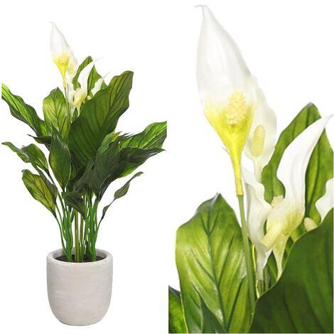 Planta de Espatifilo Artificial. en Maceta de Cemento. 50 Cm