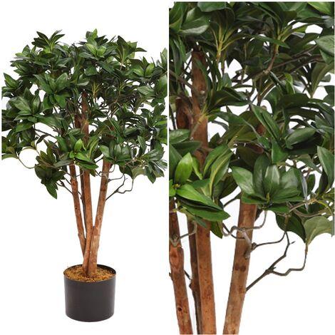 Planta de Pittosporum Artificial. Tronco Natural. 75 Cm