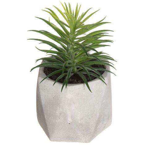 Planta decorativa con maceta 7x14cm modelos suritdos EDM 83208