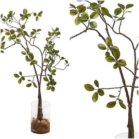 Planta Ficus Microcarpa raices. Incluye maceta de cristal. Realista. 70 cm