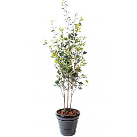 Plante Artificielle / Ficus Artificiel coloris vert - Dim : 180 x 70 cm -PEGANE-