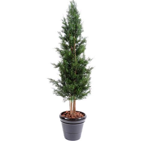 Plante artificielle haute gamme Spécial extérieur / Cyprès artificiel DE LAWSON UV résistant - Dim : 180 x 60 cm