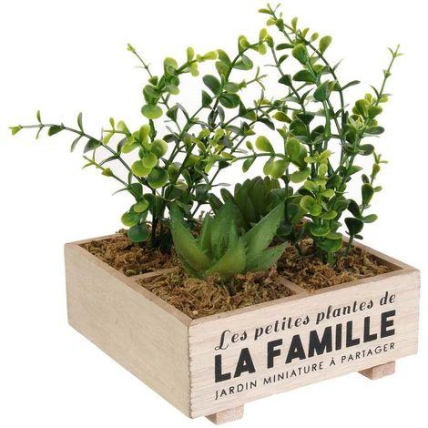 Plante artificielle Les petites plantes de la famille