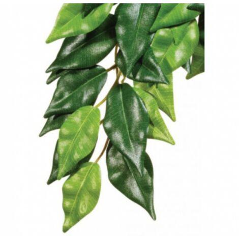 Plante Ficus pour terrarium Exo Terra 70 cm
