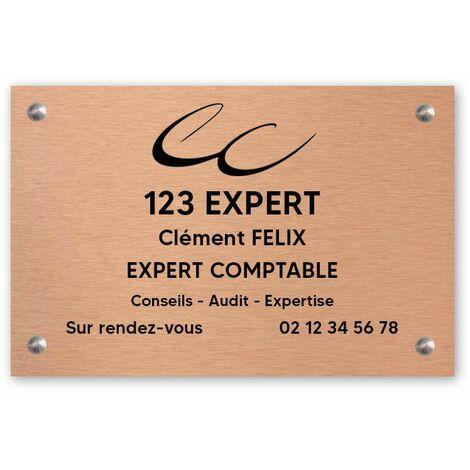 Plaque professionnelle personnalisée en PVC avec logo pour expert comptable - Format 30 cm x 20 cm - Blanche lettres bleues - Vis + chevilles + cache vis - Blanche lettres bleues