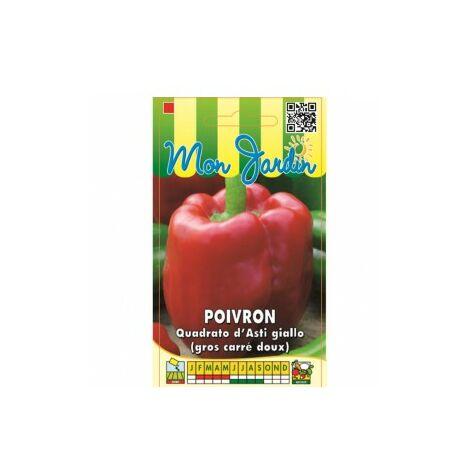 Poivron Quadrato d'asti Giallo ( poivron gros carré doux ) - 3g