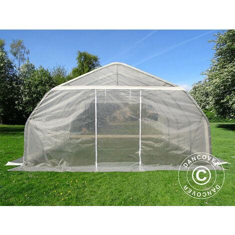 Polytunnel greenhouse, 5.4x6x2.9 m, PE, 32.4 m², Transparent