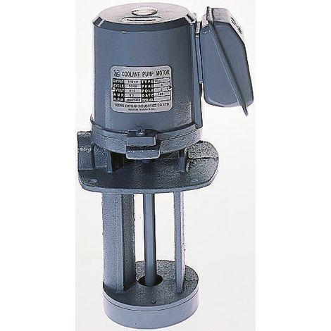 Pompe d'arrosage avec moteur de 1/8 HP, Fonte, 3/8pouce