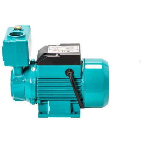 Pompe d'arrosage JT250 250W 230V 30l/min