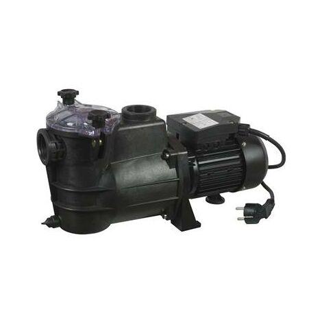 Pompe de filtrage pour piscine - DE 650 W OU 1000 W