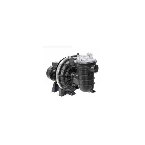 Pompe de filtration piscine La Sta-rite 0,55 kW - Mono - 0,75 CV - STA RITE