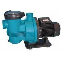 Pompe de filtration PULSO 1.5 cv Monophase 22m3/h