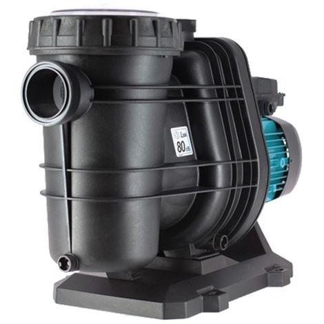 Pompe TIFON 1 de 0,50 CV - 15 m3/h