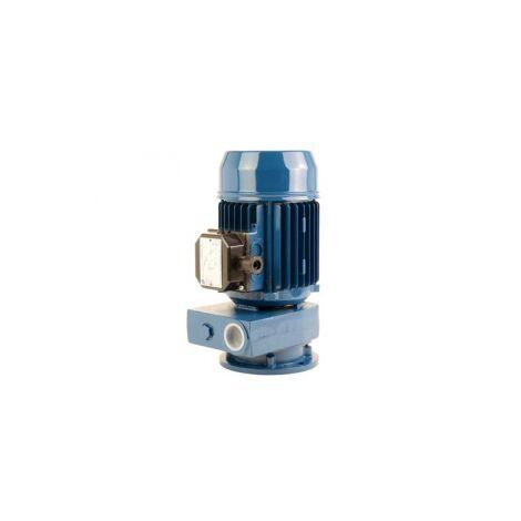 Pompes a canal latéral 380V - 0.74Kw