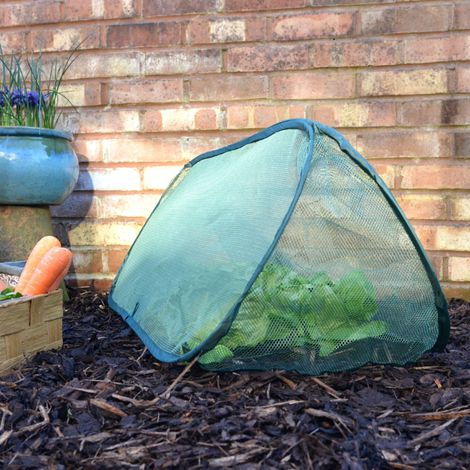 Pop Up Net Cloche & Plant Protection Cover (Various Sizes)