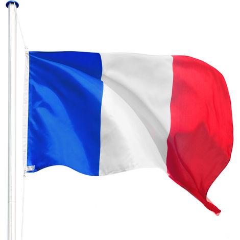 """main image of """"Mât Poteau Porte Drapeau avec 1 Drapeau de la France en Aluminium 625 cm Gris"""""""