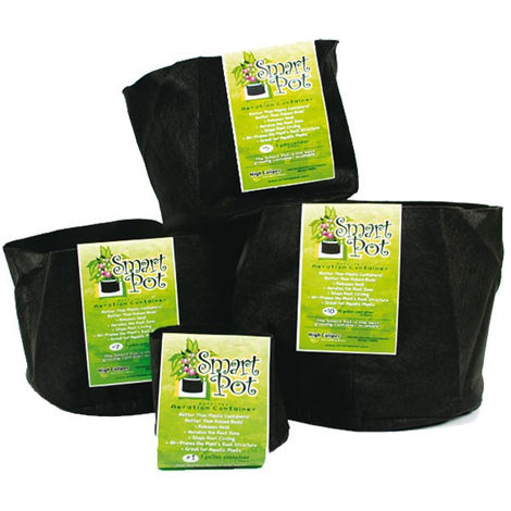 Pot 38L 10 gallon - Géotextile - Smart Pot