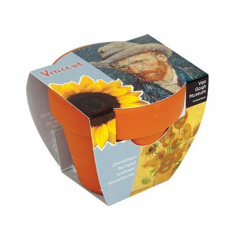 Pot à semis pour tournesol Van Gogh - Lot de 2 - Astuceo