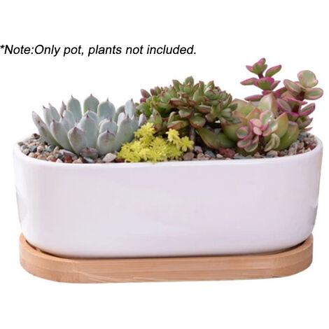 Pot De Fleur En Ceramique Elliptique Avec Plateau En Bambou Pot De Plantes Succulentes Pour La Decoration De Bureau De Table