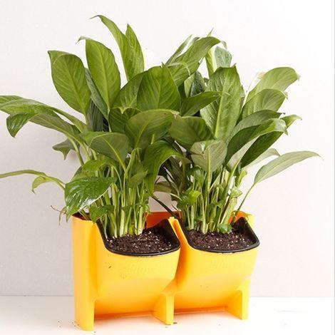 Pot de fleur jaune Mur végétal vertical intérieur et extérieur balcon Pots à fleurs muraux Combinaison créative de à en plastiqu
