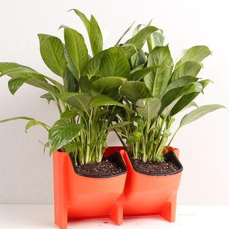 Pot de fleur rouge Mur végétal vertical intérieur et extérieur balcon Pots de fleurs muraux Combinaison créative de de en plasti