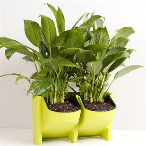 Pot de fleur vert Mur végétal vertical intérieur et extérieur balcon Pots de fleurs muraux Combinaison créative de en plastique
