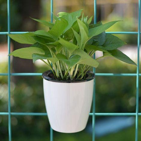 Pot de fleur vert Pots de fleurs paresseux automatiques pilules de viande de radis absorbant l'eau Hydroponique de en plastique