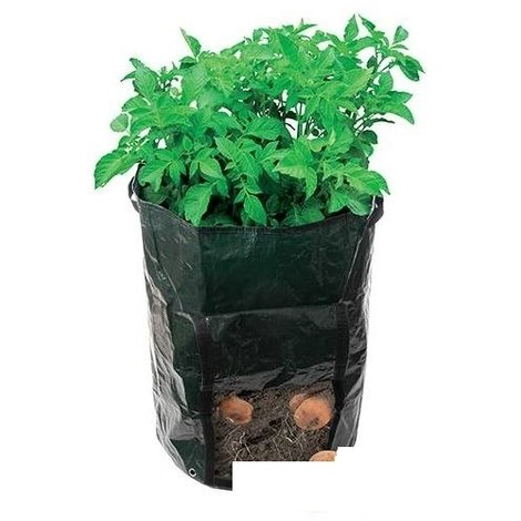 Potato Planting Bag - 360 x 510mm
