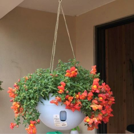 Pots de fleurs en plastique accrochant pot de fleur de de suspension avec la chaîne accrochante, taille moyenne: 23.2 * 15.7cm,