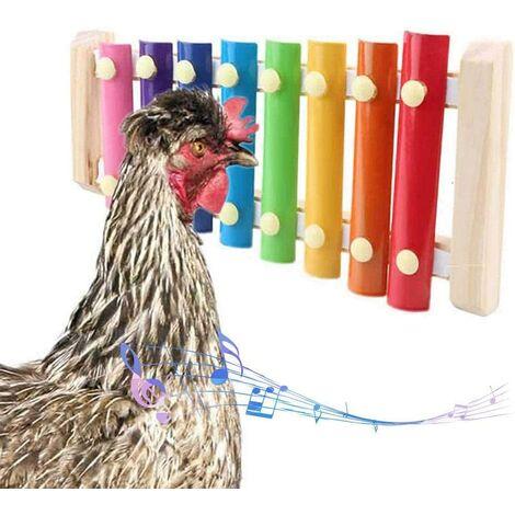Poulet jouet perroquet jouet xylophone jouet 8 clés poulet picorer jouet poulailler picorer jouet jouets pour enfants