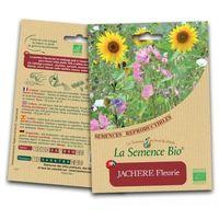 Prairie Fleurie - Jachère Fleurie - Semences bio