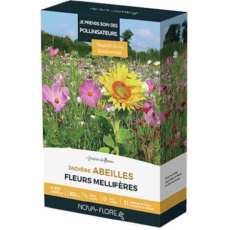 Prairies fleuries : Jachère abeilles 300 à 600 m2