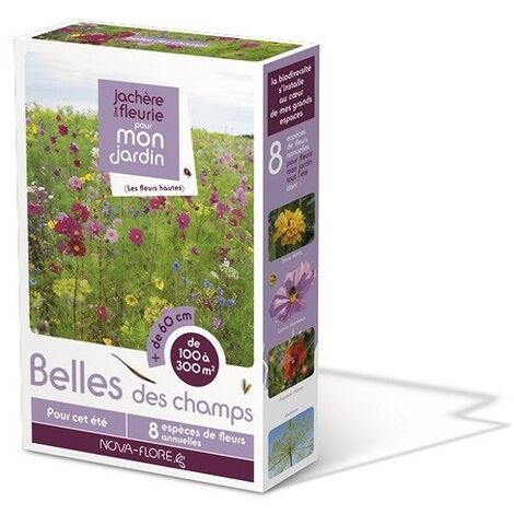 """main image of """"Prairies fleuries : jachères belle des champs 100 m2"""""""