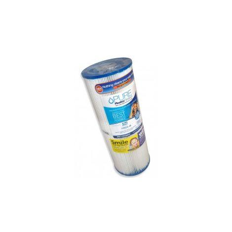 PRB25-IN Cartouche de filtration piscine ou spa