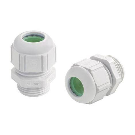 Presse-étoupe LAPP SKINTOP® ST-HF-M 12 x 1.5 53111407 M12 Polyamide gris clair (RAL 7035) 1 pc(s)