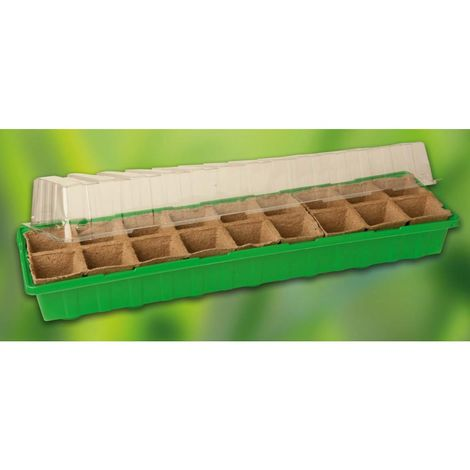 Prima Flora 500104 Invernadero mini con 18 botes verde 54 x 15 x 12 cm