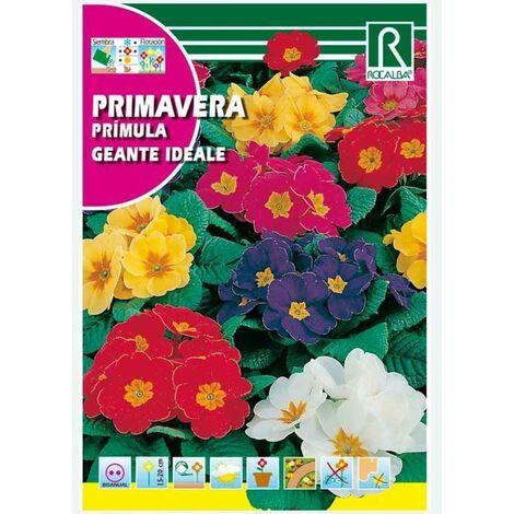"main image of ""PRIMAVERA GIGANTE IDEALE - SOBRE DE SEMILLAS 0,2G"""