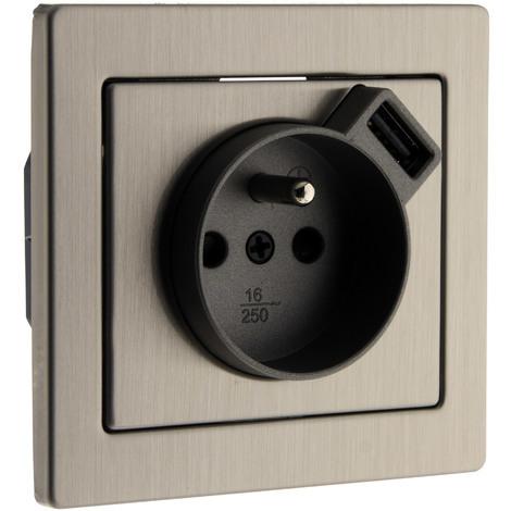 Prise 2 P+T Inox brossé avec chargeur USB 2,4A - Art'Flat