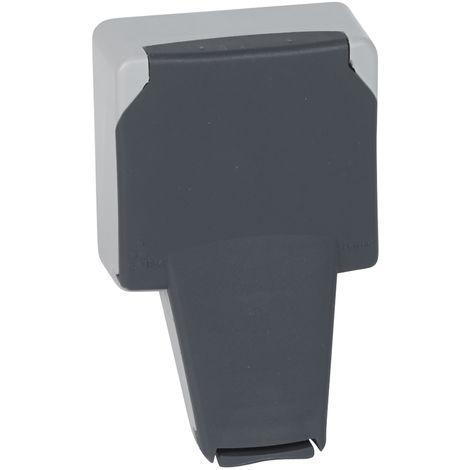 Prise 2P+T à volet IP66 - 16 A - 250 V~ - Plexo 66 composable gris IP66/IK08