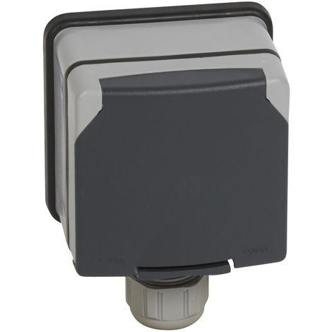 Prise 3P+N+T à volet - 20 A - 400 V~ - Plexo 66 monobloc gris - IP66/IK08